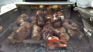 Black Cherry Burls